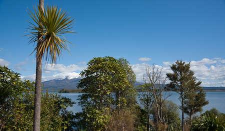 tongariro: Tongariro escena del parque nacional