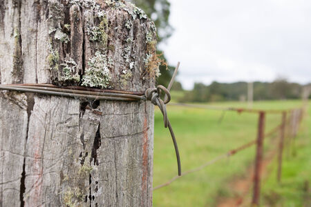 Fencepost with knot of wire  photo