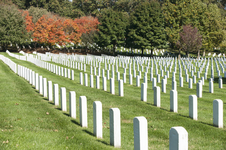Headstone rows at Arlington National Cemetery, Stock Photo