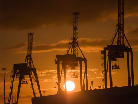 hoists: Three giraffe like container cranes silhouetted against rising sun. Port of Tauranga cranes at the container facility on Tauranga Harbour. Stock Photo
