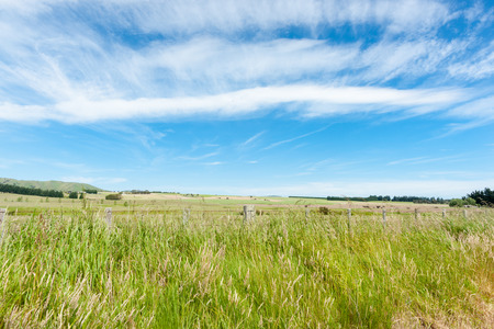 Rural scene, green pastures  blue sky filled with cirrus cloud formation. Stock Photo