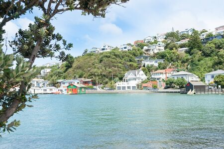 evans: Evans Bay Wellington scenery homes and colourful  harbourside buildings and boat sheds framed on left by pohutukawa tree