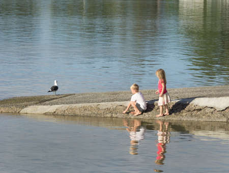 unconcerned: Tauranga New Zealand March 13, 2016; Two children playing near water on boat ramp  while black back gull stands unconcerned nearby