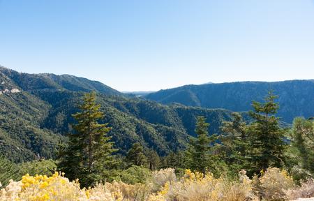 Bernardino: San Bernardino National Forest California USA