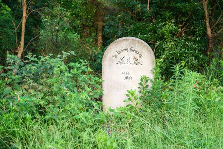 headstone: Single Concrete headstone contrasts with greenery of bush Stock Photo