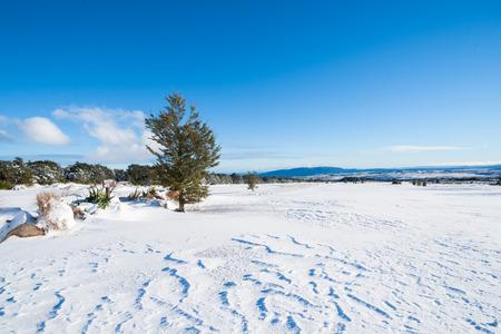 drifts: Wind blown drifts from overnight snowfall on Mount Ruapehu  golf course landscape Stock Photo