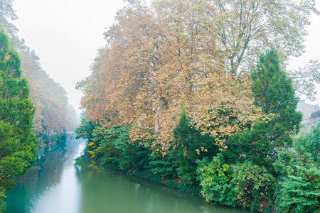 Tree colors in morning fog lining a bend in Canal Du Midi in Toulouse, France.