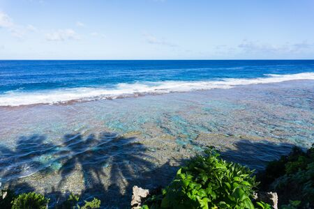niue: Scene across ocean to distant horizon from land over patterns of coral reef and shadows of three palm trees on water below on  Tamakautoga coral beach
