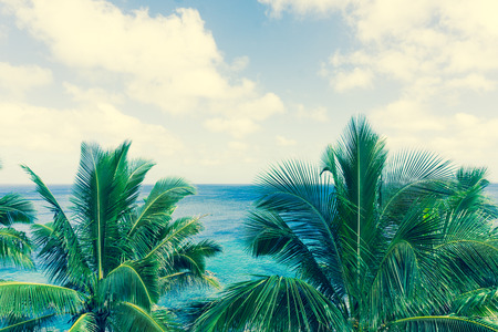 niue: Retro effect faded colors in tropical scene palm trees and fronds swaying in breeze over ocean  distant horizon and below sky. Stock Photo