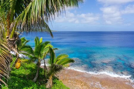 swaying: Tropical scene coral reef in turquoise water below palm trees and fronds swaying in breeze over ocean  distant horizon.