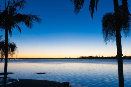 Beautiful morning colors across bay, Tauranga New Zealand sunrise framed by palm trees.