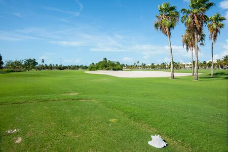 Palm trees cast shadow over golf course fairway with sand bunker beyond and conc shell on tee.