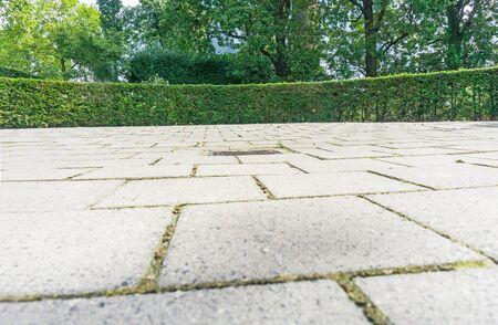 円形のよく維持されたヘッジの背景と背の高い緑の木に囲まれた石畳の庭。