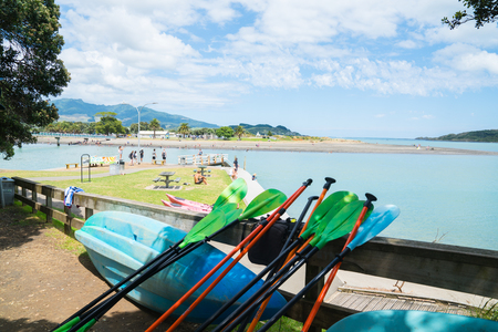 RAGLAN, NEW ZEALAND - JANUARY 14, 2018; View of bay from between shady pohutukawa trees along harbor edge with kayaks and paddles in foreground.