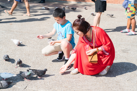 CHIANG MAI,  THAILAND - JANUARY 28 2018;  Woman in bright red dress crouches feeding pigeons in Pratu Tha phae Park outside the old city wall east gate. Editorial