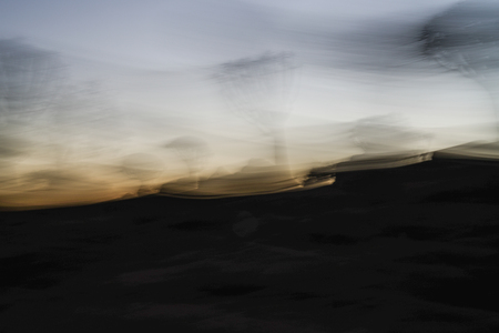 Ghostly high wind effect of Quiver Tree Forest before sunrise with zom blur effect in Namibia. Zdjęcie Seryjne