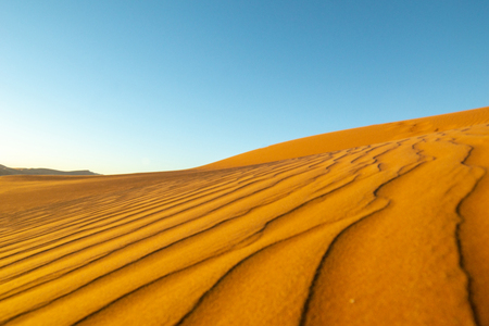 Long wind formed ripples with shadow defined edges in dunes of Hidden Vlei, Sossusvlie Namibia