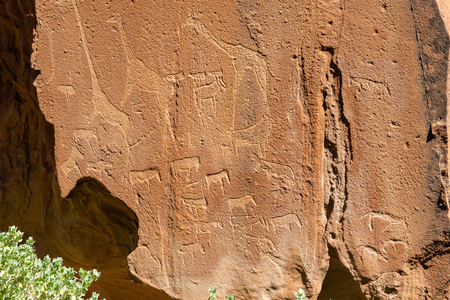 African rock art engravings of animals at Twyfelfountain Namibia