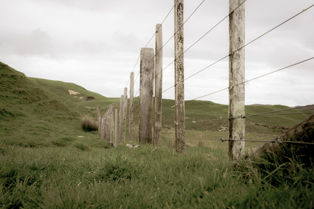 Aged photo of farmland and fence dissapearing over hills.
