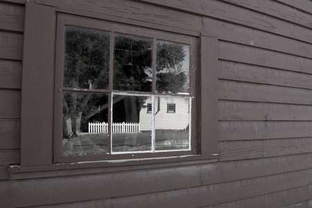 Image of backyard relected in old paned window set in weatherboard wall.