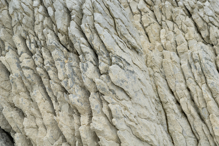 Kaikoura unusual coastal features white stratified sandstone forms interesting patterns