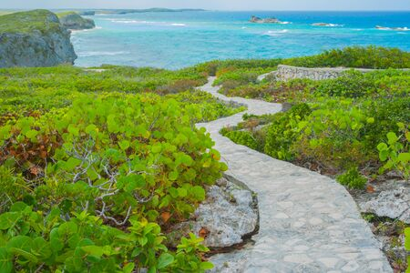 Winding concrete and stone path through green vegetation to Carribean Mudjin Beach on coast of Turks and Caicos Islands.