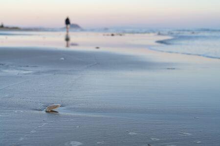 Oceanbeach as sun is on horizon creating golden glow across sea to beach still in dark of morning. Banco de Imagens