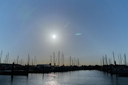 Boats moored in marina with hulls and masts backlit by rising morning sun