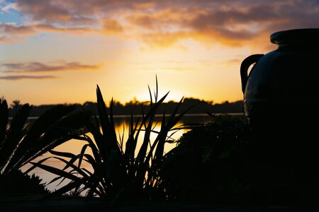 Dramatic sky at sunrise with silhouette large urn and flax in foreground close-up.