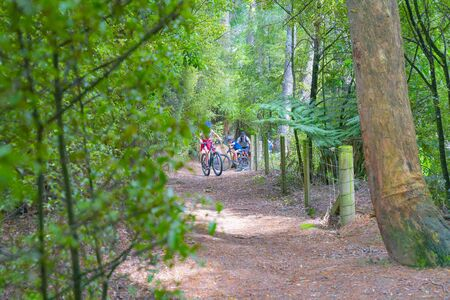 Arapuni, New Zealand - Family group cycling on New Zealand Cycle Trail and Waikato River Trail along high bluffs above Waikato River through shady forest between fences
