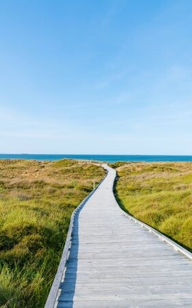 Wooden walkway through dunes to sea at papamoa, Tauranga New Zealand.