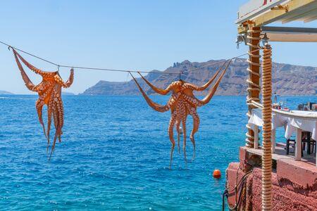Octopus hanging outside restaurant by the sea, at Ammoudi Bay on Santorini Banco de Imagens