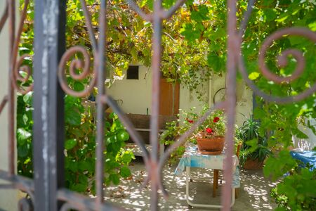Cool shady garden behind and through wrought iron gates with focus on garden behind. 写真素材