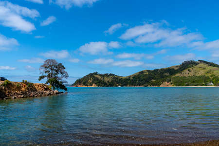 Scenic Man O War Bay and surrounding land with one tree on point on Waiheke Island New Zealand