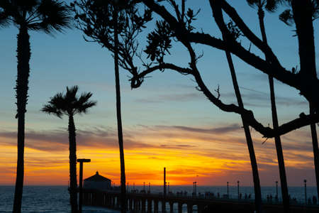 View through tree branches and tropical palms along silhouteeted pier at sunset along Californian beaches. 版權商用圖片