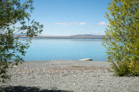 Green foliage and grey stony lake edge and turquoise blue water of snow feed scenic Lake Pukaki in South Ilsand New Zealand.