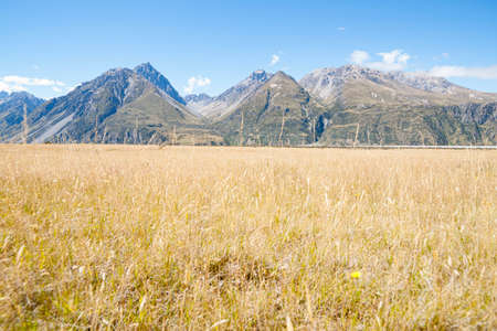 Landscape of golden grass from highway through Southern Alps In South Island New Zealand