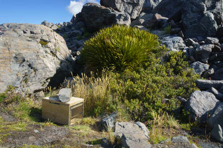 Predator trap amongst rocky landscape with native bushes set to catch animal pests in Mount Cook National Park, Canterbury New Zealand