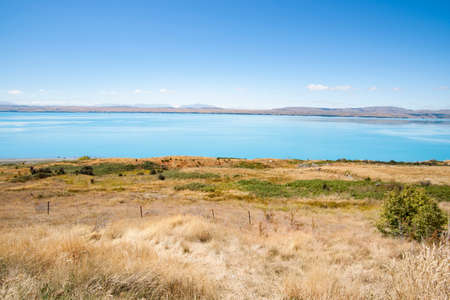 Dry golden grass leads to turquoise blue water of snow feed scenic Lake Pukaki from lookout point Pete's Lookout by highway Canterbury New Zealand.