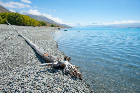 Driftwood log on grey stony lake edge and turquoise blue water of snow feed scenic Lake Pukaki in South Island New Zealand. 版權商用圖片