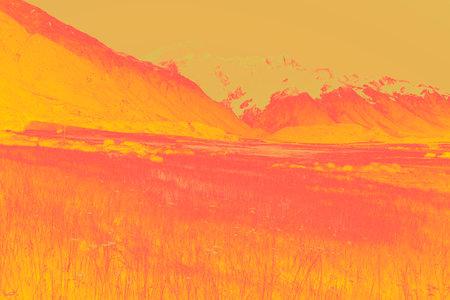 Impressionism wildflowers in valley