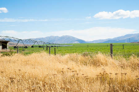 Lateral irrigation system across flat farmland in Caterbury New Zealand.
