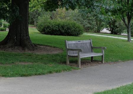孤独な公園のベンチ