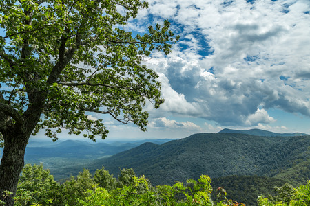 blue ridge: A view of the North Carolina countryside from the Blue Ridge Parkway Stock Photo