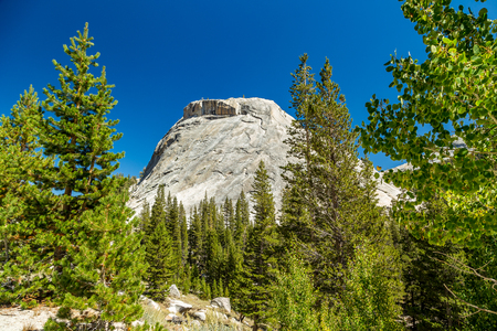 polly: Polly Dome is a prominent granite dome rising 1,640 feet (500 m) above the northwest side of Tenaya Lake and Tioga Road in the Yosemite high country. The dome, more than 3 kilometers (~2 miles) long, is a substantially intact mass of granitic rock that ha Stock Photo