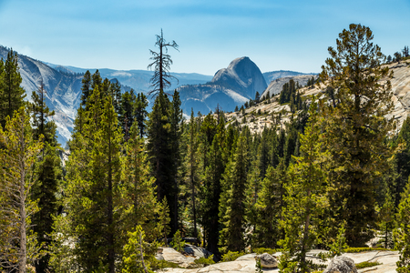 distinct: Half Dome is a granite dome at the eastern end of Yosemite Valley in Yosemite National Park, California. It is a well-known rock formation in the park, named for its distinct shape. One side is a sheer face while the other three sides are smooth and round Stock Photo