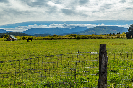 fenceline: A View of Trampas Peak in the Sangre de Cristo Mountains along State Highway 76.