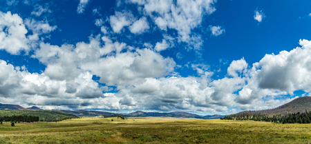 seeps: Valles Caldera is a 13.7-mile wide volcanic caldera in the Jemez Mountains of northern New Mexico. Hot springs, streams, fumaroles, natural gas seeps and volcanic domes dot the caldera floor landscape. The highest point in the caldera is Redondo Peak, an