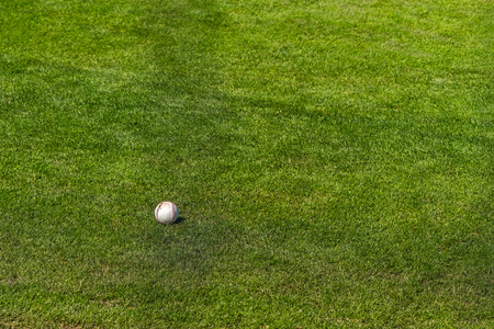 A baseball lies in the grass on a warm spring day.
