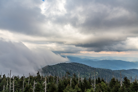 appalachian: Heavy evening fog rolls across the Appalachian Mountains at Clingmans Dome. Stock Photo